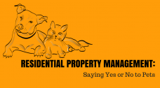 residential property management with pets